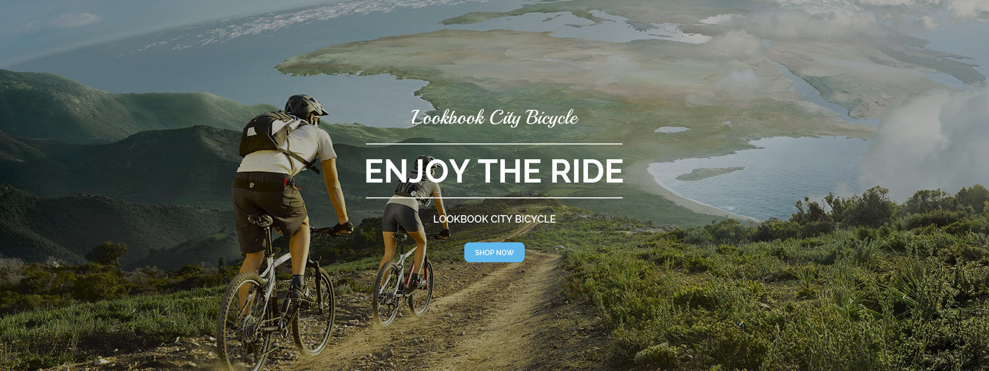 Lookbook City Bicycle
